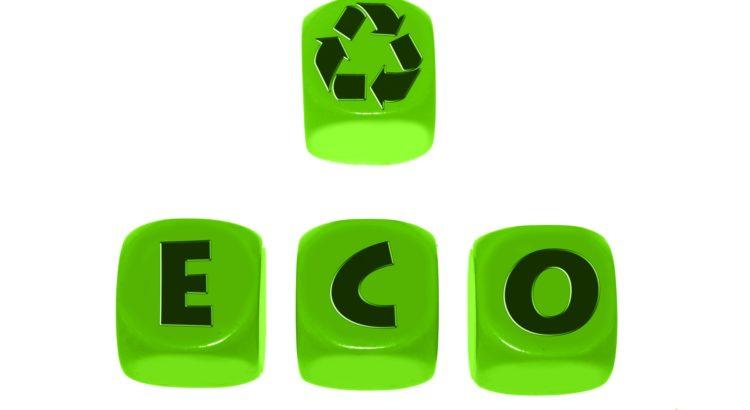Die Umweltziele